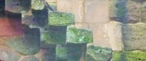 Die Trittstufenblöcke sind bis zur Hälfte gestützt