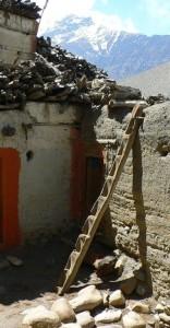 1. 1b Steigebaum in Nepal - Kopie